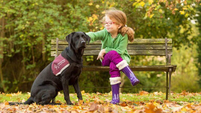 Hearing dogs: i cani che sentono per voi